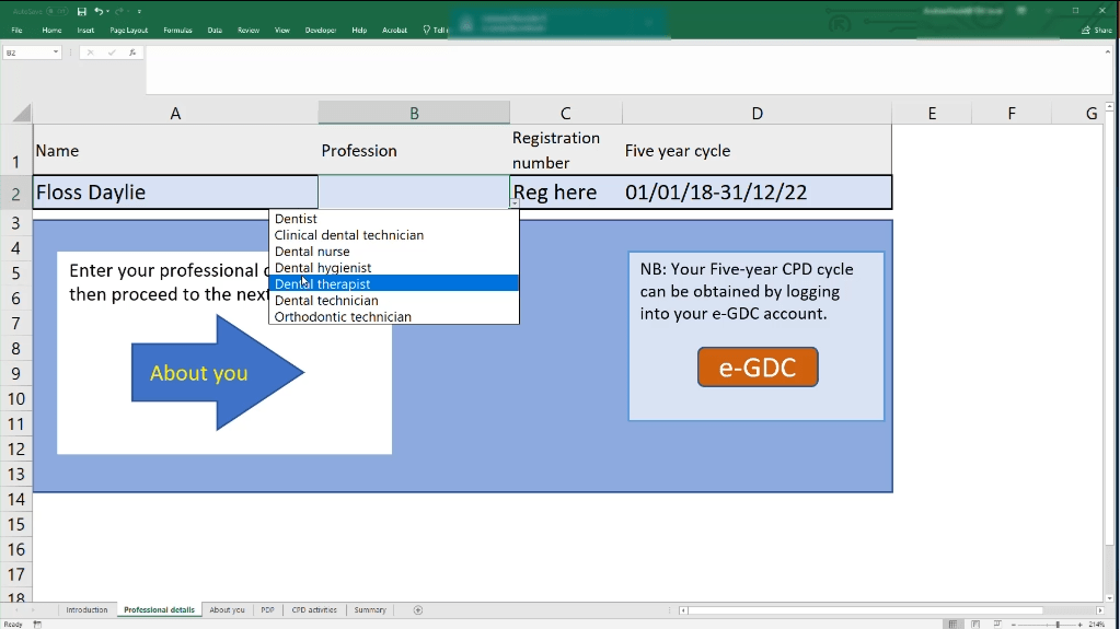 Excel template guide